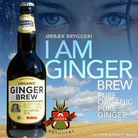 Ørbæk Bryggeri Organic Ginger Brew