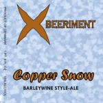 Xbeeriment Copper Snow