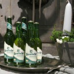 Økologisk øl: 2015 var et gennembrudsår – dobbelt så mange på to år